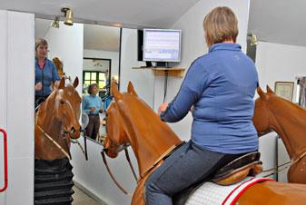 Horse Simulator Horse And Rider Biomechanics